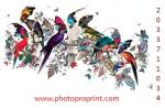 Professional Printers For Photographers