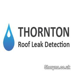 Picture of Flat Roof Leak Detection in UK is now Affordable and Easy
